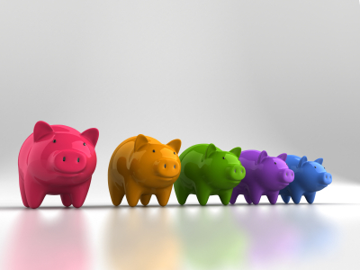 colored pigs